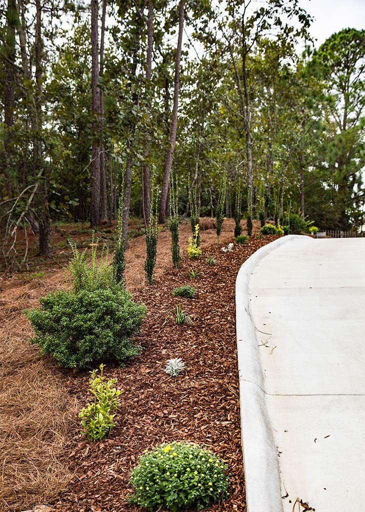 Landscape Installation &  Concrete Driveway, Pinehurst NC