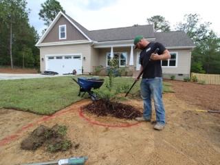 Tree Installation,  Landscaping Services in Pinehurst NC